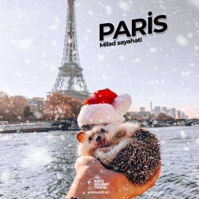 Romantic Christmas in Paris